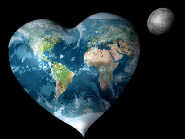 bizwebsolutions heart-world