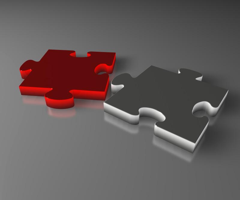 bizwebsolutions puzzle