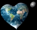 bizwebsolutions heart-world